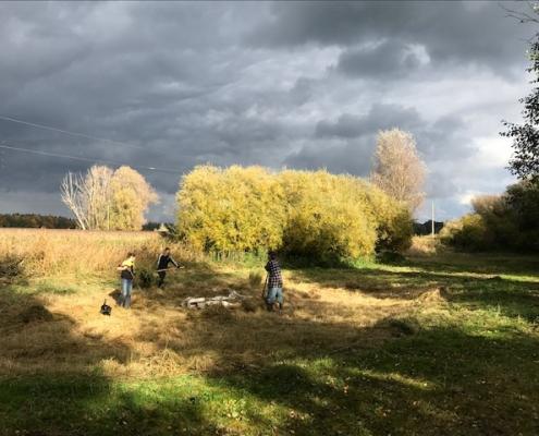 Mahd der Ausgleichsfläche in Mammendorf